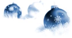 BVGA December Newsletter