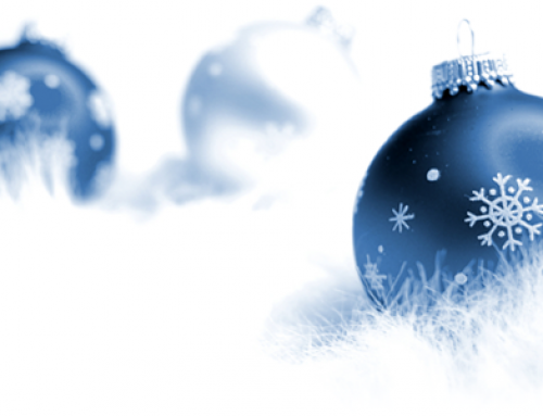 Our December newsletter – Merry Christmas and a Happy New Year