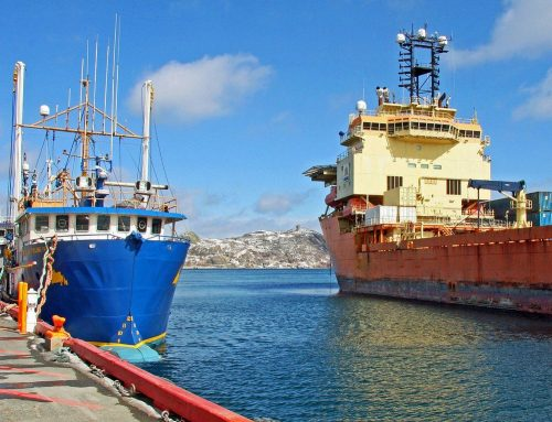 Strategic opportunities for Newfoundland and Labrador companies